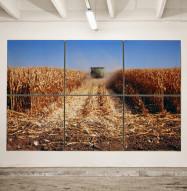 Adapt Acoustic Panel Corn Field