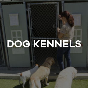 Dog Kennel Soundproofing