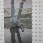 Altitude-Chop-House-Tree-Panel