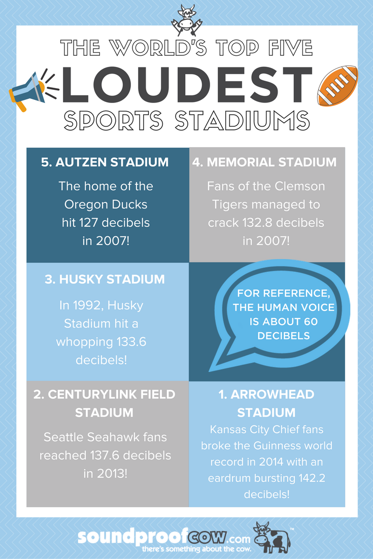 World's Top 5 Loudest Sports Stadiums