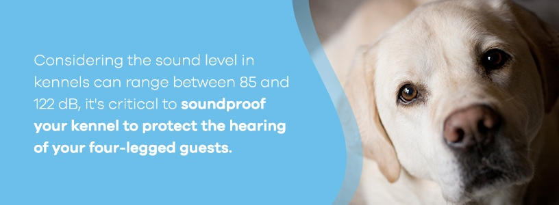 Soundproof Dog Kennels to Protect Hearing of Dogs