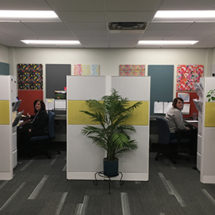 acoustic panels is office space