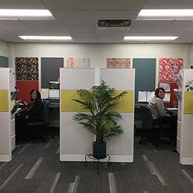 acoustic panels in office cubicles